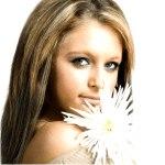 Ромашка – натуральный краситель для волос. Как окрашивать волосы ромашкой